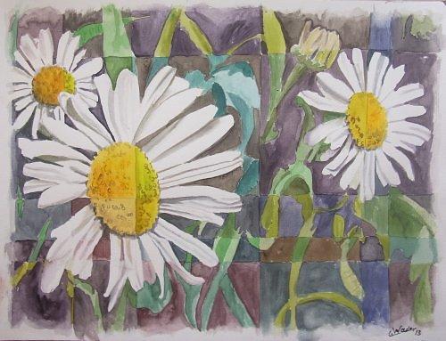 Kamillenblüten 1